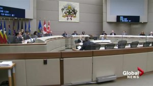 Calgary city council asked to consider term limits and recall legislation