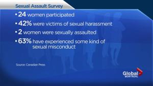Sexual misconduct in Quebec legislature not uncommon