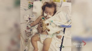 1-year-old Okotoks toddler needs rare transplant to live
