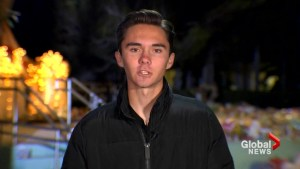 Marjory Stoneman Douglas High School student calls for yearly day of action on gun control laws