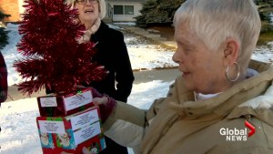 Two-dollar tiny tree brings Calgary neighbours together during the holidays: 'It's fantastic!'