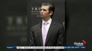 Did Trump Jr. give proof of Russian collusion with the Trump Campaign?