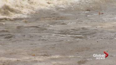 Varied Winter Conditions Make For Difficult Driving In New Brunswick