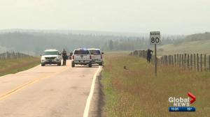 German tourist shot in head on Alberta highway 'not able to talk or move his right side'
