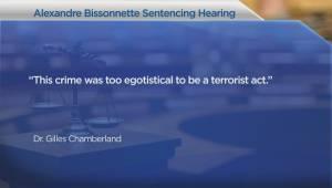 Quebec City mosque shooting wasn't terrorism, says Crown psychiatrist