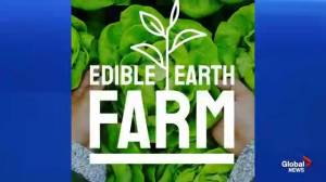 Foodie Tuesday: Edible Earth Farm