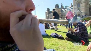 Feds announce timeline for marijuana legalization legislation