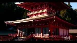 Amazing Japan adventures