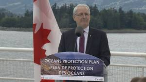 Feds announce measures to protect B.C. Southern Resident Killer Whale population
