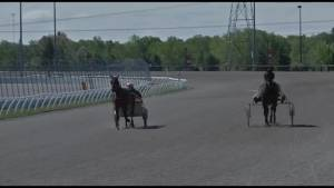 Kawartha Downs to hold 18 race dates this summer