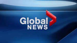 Global News Hour at 6 Edmonton: Nov. 23