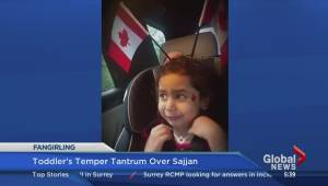 Toddler throws temper tantrum over Harjit Sajjan
