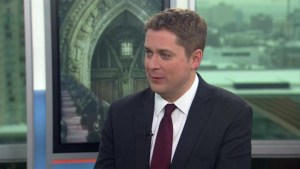 Economic fundamentals are not as strong as they should be: Scheer