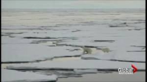Russia steps up Arctic claim by submitting land bid to UN