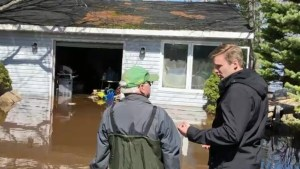 N.B. premier looks ahead to recovery for flood victims