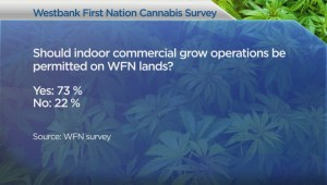 Survey says Westbank First Nations members want dispensaries