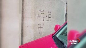 Fredericton business owner upset after building defaced by swastikas