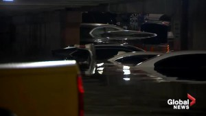 Parking garage at Dallas, TX airport almost completely flooded