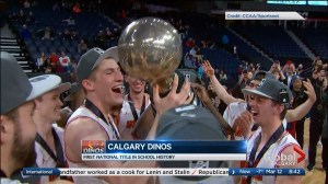 Dinos win first ever basketball title