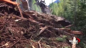 Clean up of B.C. mudslide that covered couple's car in Kootenay Pass