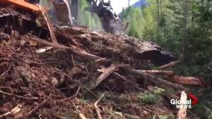 Clean up of B.C. mudslide that covered couple's car in Kootenay Pass (00:44)