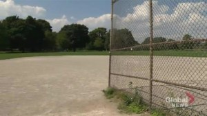 Adult softball being phased out at popular Toronto ball diamonds