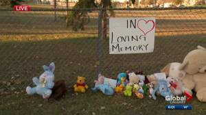 Toddler dies after collision in Calgary's Vista Heights
