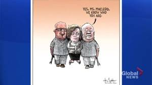 Lisa MacLeod straitjacket cartoon draws criticism for stigmatizing mental health issues