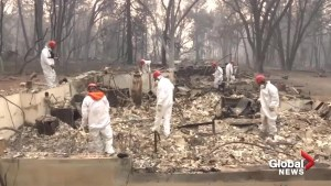 Volunteers join search for missing in California wildfires