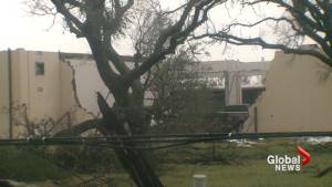 Downed trees, power lines among the damage in Rockport, TX as Hurricane Harvey hits