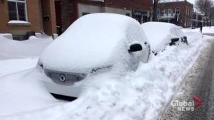 Montrealers have fun – and even make money – with the snow