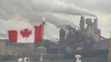 Virtually impossible' for Canada to cut emissions in half by