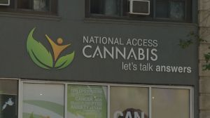 National Access Cannabis Saskatoon discovers doctor was prescribing without a license