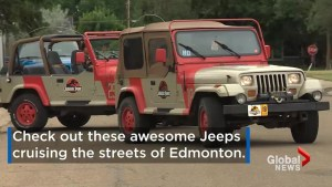 Jurassic Park Jeeps cruise the streets of Edmonton