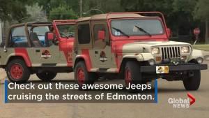 Jurassic Park Jeeps cruise the streets of Edmonton