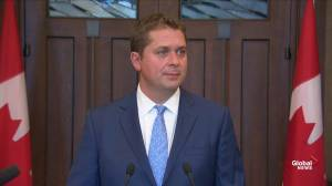 Scheer says former diplomats offering advice on China is 'healthy'