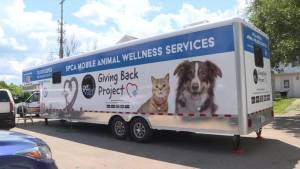Mobile animal wellness services trailer hosting spay and neuter clinic
