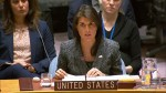 U.N. Security Council unanimously passes 30-day humanitarian truce in Syria