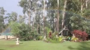 Caught on camera: Australian woman captures 'backyard rainbow'