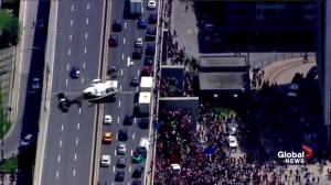 Raptors victory parade: Drivers leave cars on Gardiner Expressway to watch parade