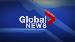 Global News at 5 Edmonton: Dec. 8