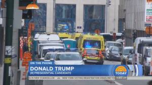 'I would do a lot more than waterboarding': Trump on Brussels attack
