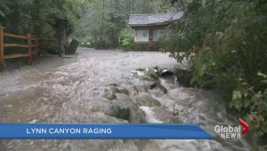 Lynn Canyon flood fears after heavy rain begins to fall