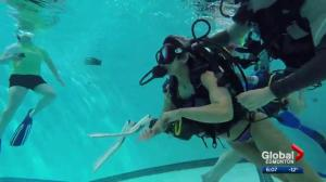 People with disabilities face fears by attempting scuba diving in Edmonton