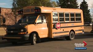 Alberta government pushes back implementation of new training for entry-level school bus drivers
