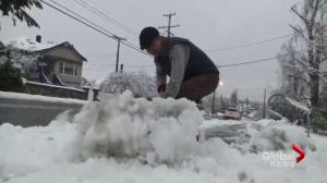 Parts of Vancouver Island snowed under