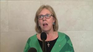 Elizabeth May says Butts' testimony put some things 'in perspective'