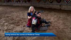 Going behind the scenes at Medieval Times