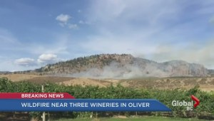 Firefighters tackle new fire near Oliver wineries