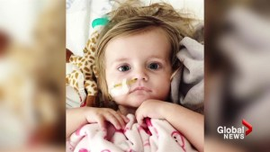 Alberta toddler receives life-saving organ transplant
